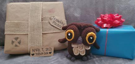 Omniscient Owl by Shawtay (Pacera)